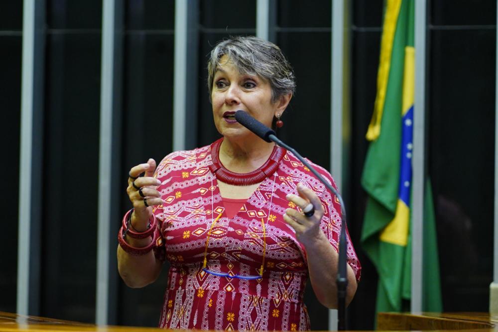 Homenagem ao Dia do Bombeiro Brasileiro. Dep. Erika Kokay (PT-DF)