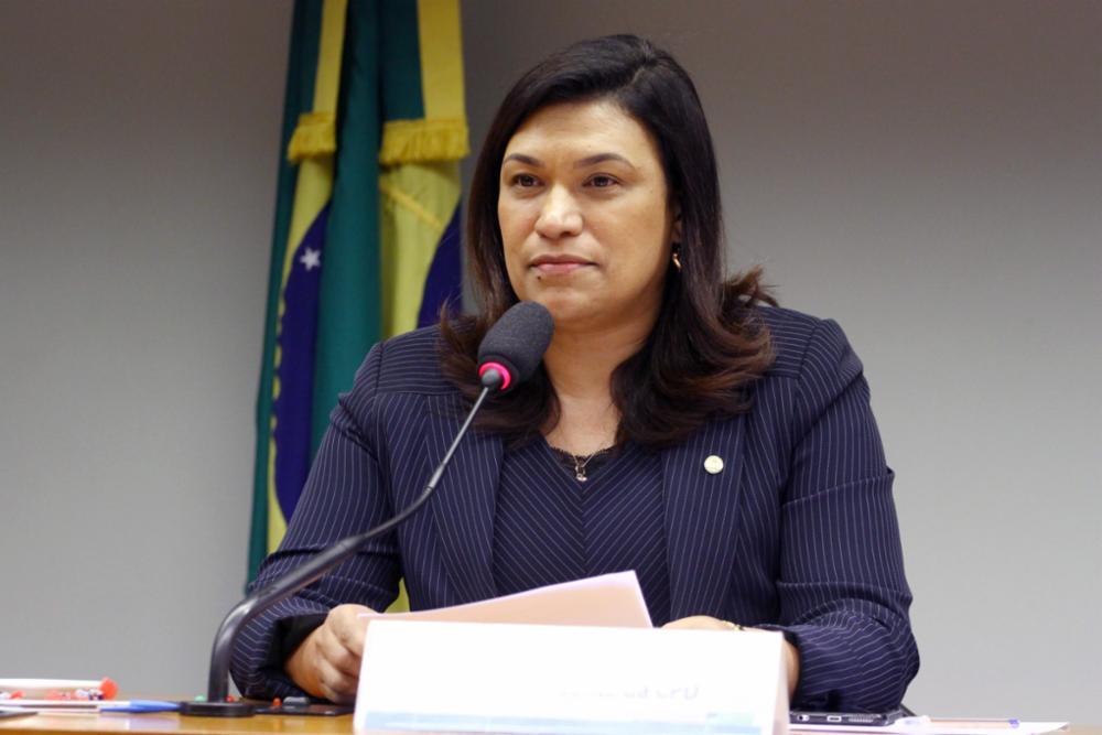 Fórum Nacional de Empregabilidade das Pessoas com Deficiência. Dep. Maria Rosas (PRB-SP)