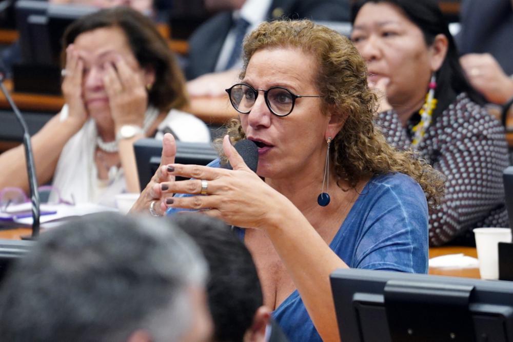 Reunião ordinária para votação do parecer do relator, dep. Samuel Moreira (PSDB-SP). Dep. Jandira Feghali (PCdoB - RJ)