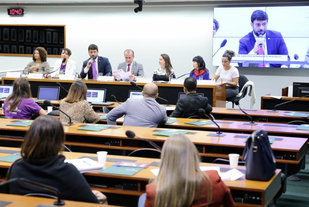 Audiência pública sobre os direitos das mulheres sob a perspectiva da política nacional