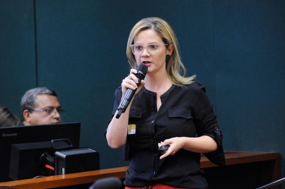 """Audiência Pública - Tema: """"Riscos das Normas Regulamentadoras de Segurança e Saúde do Trabalhador"""". Auditora Fiscal do Trabalho, Flavia Lorena Cardoso Lopes"""