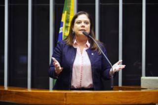 Discussão e votação de propostas. Dep. Soraya Santos PL - RJ