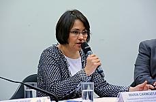 udiência Pública para discutir Correção do Fundo de Garantia do Tempo de Serviço (FGTS). (REQ 246/13. Maria Carmozita Bessa Maia, coordenadora-geral de gerenciamento de Fundos e Operações (COFIS)