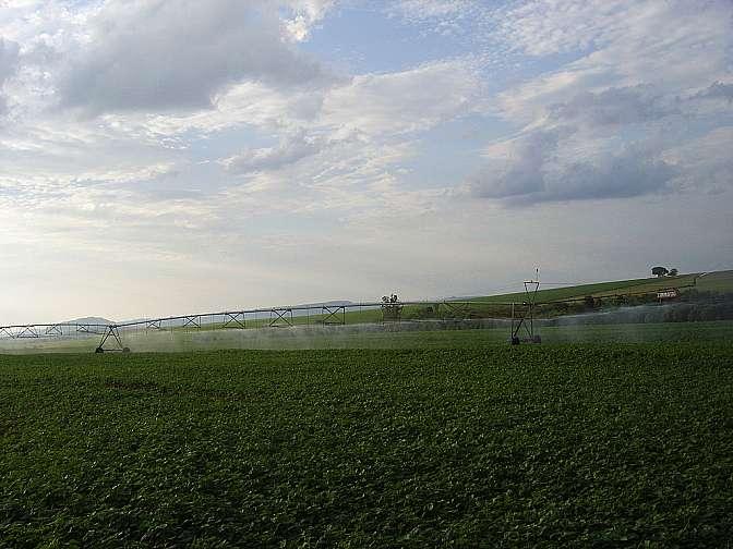 Agricultura - Plantações - Irrigação lavoura feijão