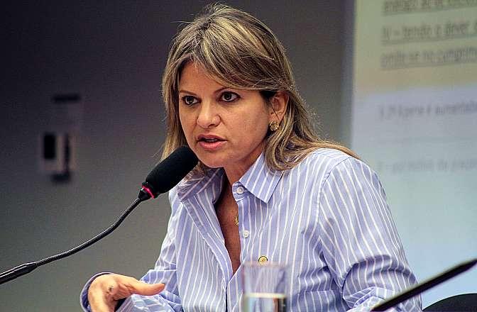Apreciação do Relatório Parcial apresentado pela (foto) dep. Flávia Morais (PDT-GO)