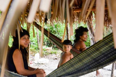 Direitos Humanos e Minorias - índios - Tribo Awá-Guajá