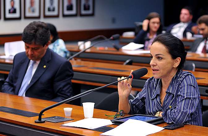 Reunião Ordinária. Dep. Rosane Ferreira (PV-PR)
