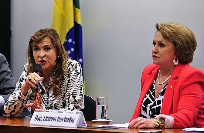 Reunião para eleição da Coordenadora-Geral dos Direitos da Mulher na Câmara. Coordenadora eleita, (E) dep. Dâmina Pereira (PMN-MG)