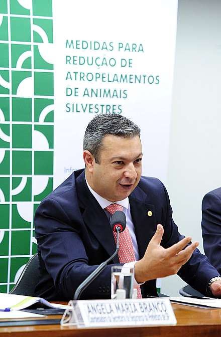 Audiência pública sobre as medidas para redução de atropelamentos de animais silvestres. Dep. Ricardo Izar (PSD-SP)
