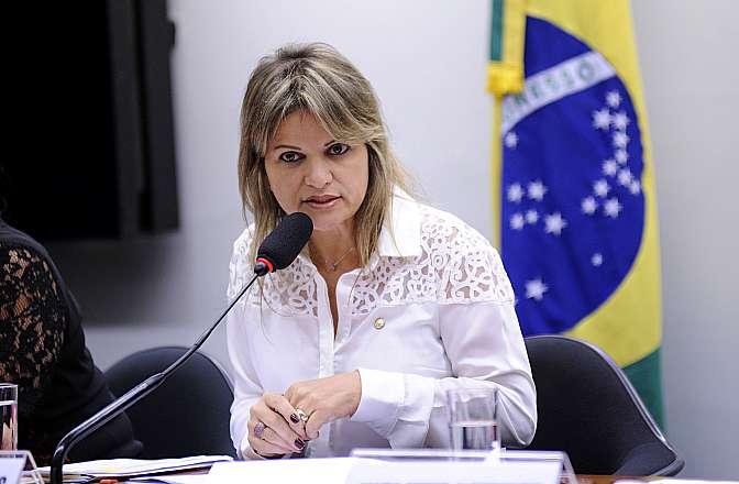 Audiência pública sobre o parto no Brasil com ênfase ao parto normal no âmbito do SUS. Dep. Flávia Moraes (PDT-GO)