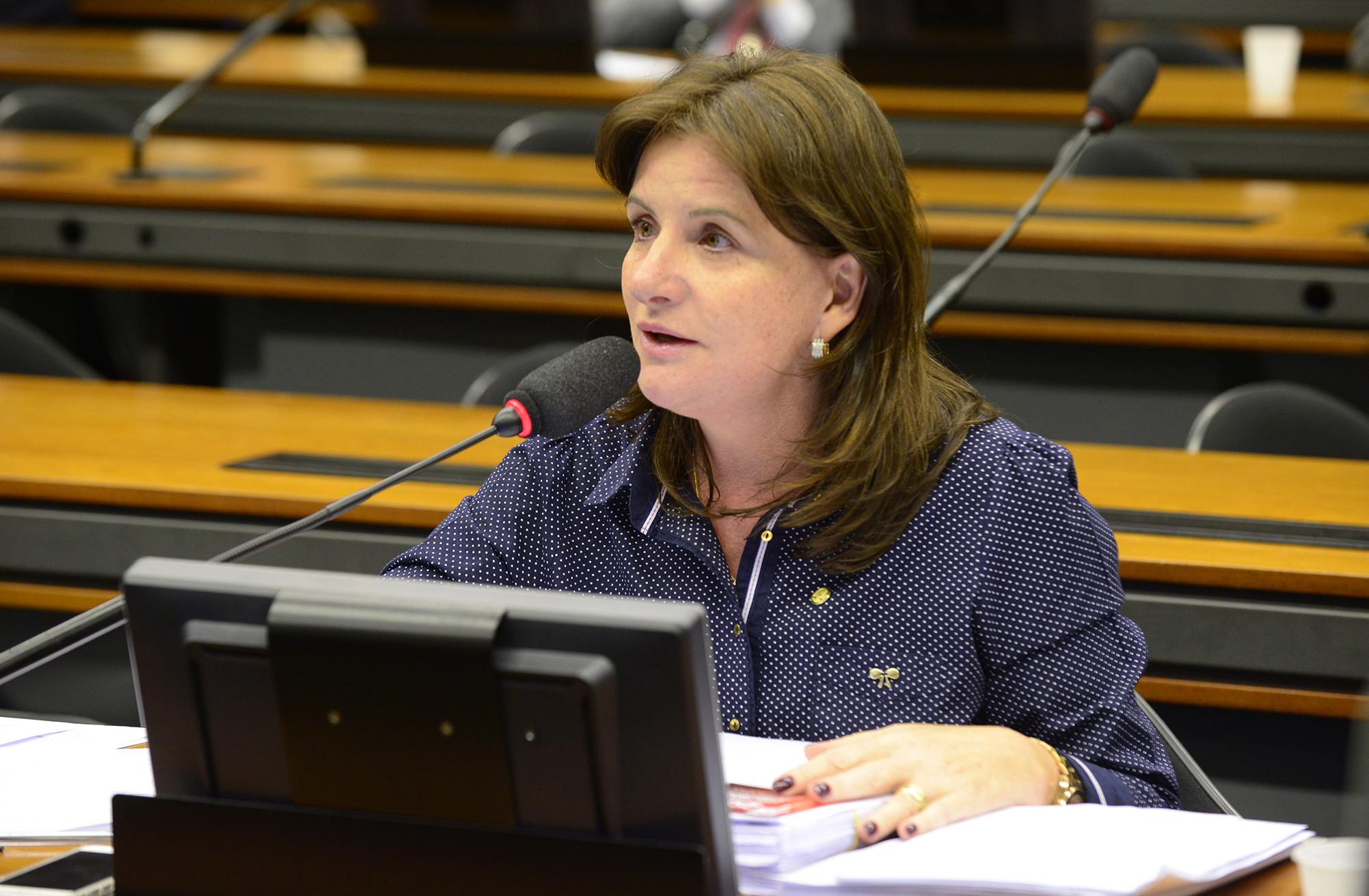 Reunião para apresentação de sugestões ao Relatório Final da CPI. Dep. Carmen Zanotto (PPS-SC)
