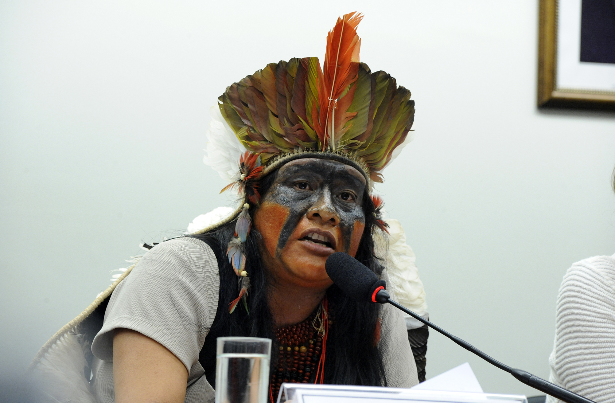 Audiência pública sobre as medidas para a resolução dos conflitos entre indígenas e proprietários de terras decorrentes dos processos de demarcação e homologação de terras indígenas no Mato Grosso do Sul. Membro de Liderança Indígena Guarani Kaiowá, Valdelice Veron