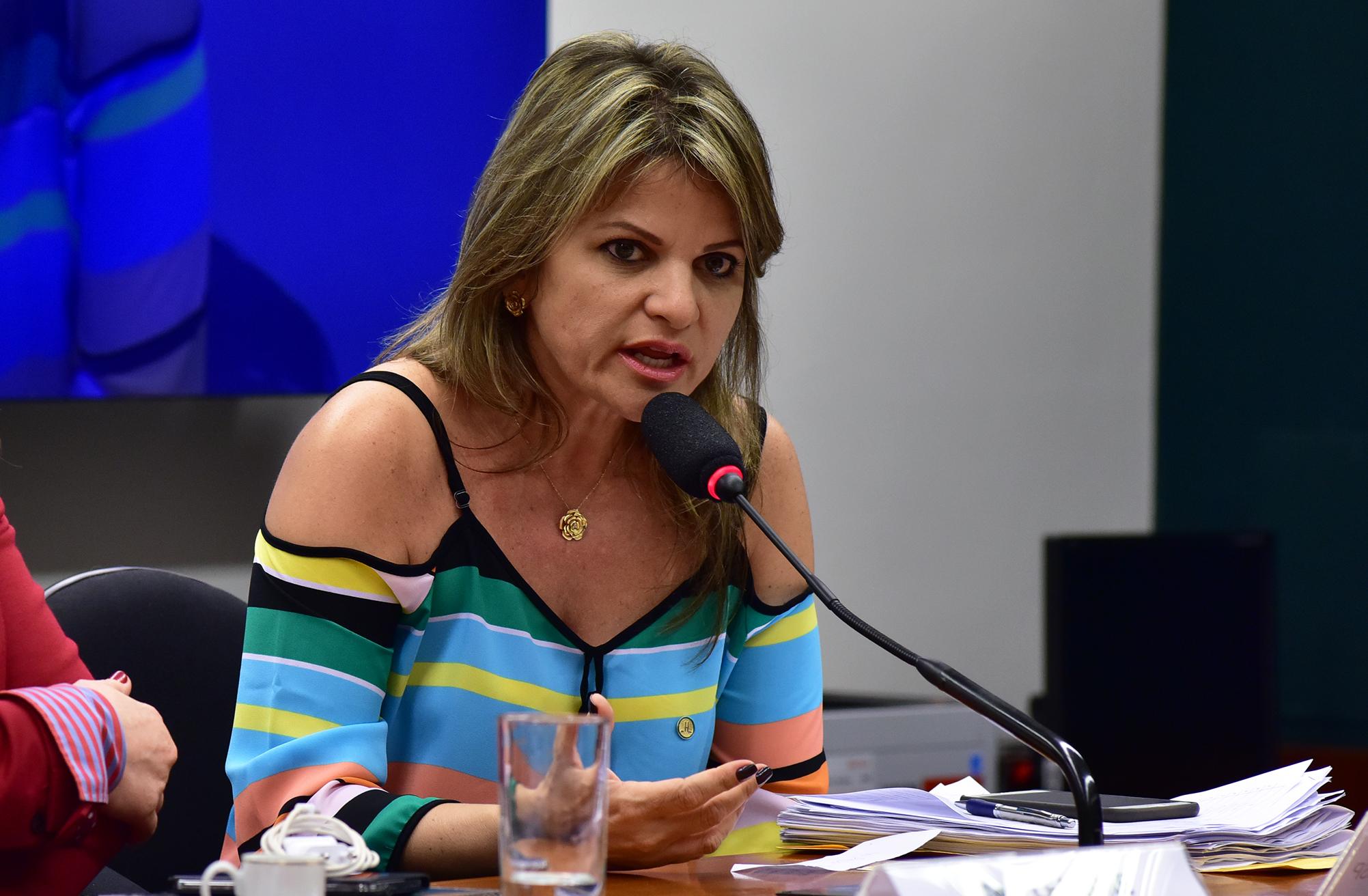 """Flávia Morais: a incompreensão do termo """"gênero"""" prejudica o debate de projetos (Foto: Zeca Ribeiro / Câmara dos Deputados)"""