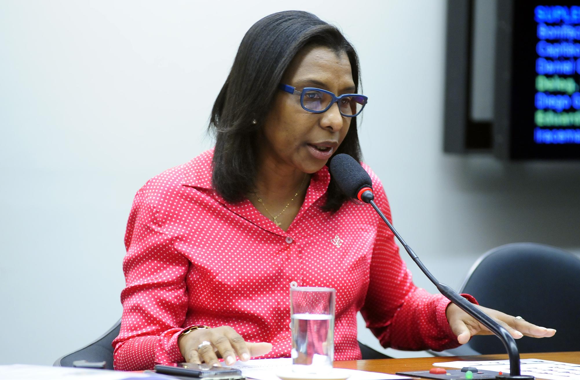 Rosangela Gomes: o atendimento policial especializado, ininterruptamente, em todos os dias da semana, é medida que se impõe como forma de coibir a crescente violência doméstica contra a mulher (Foto: Alex Ferreira / Câmara dos Deputados)