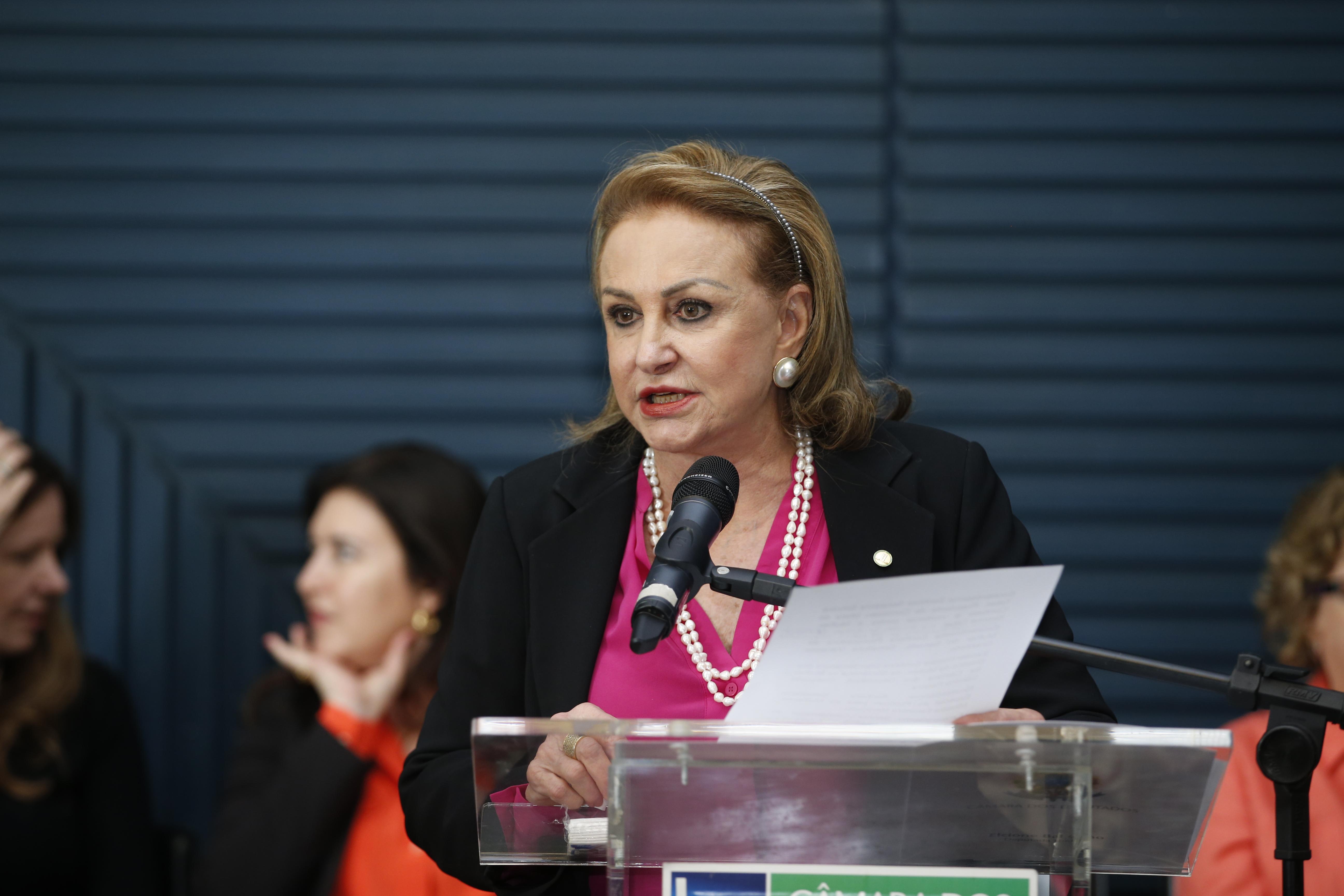 Ato para conscientizar a população sobre os tipos de violência de gênero previstos na Lei Maria da Penha, que pune os agressores de mulheres. Dep. Elcione Barbalho