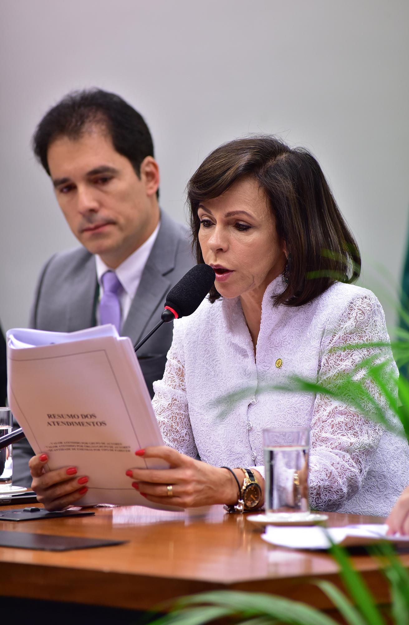 Reunião Extraordinária. Dep. professora Dorinha Seabre Rezende (DEM-TO)