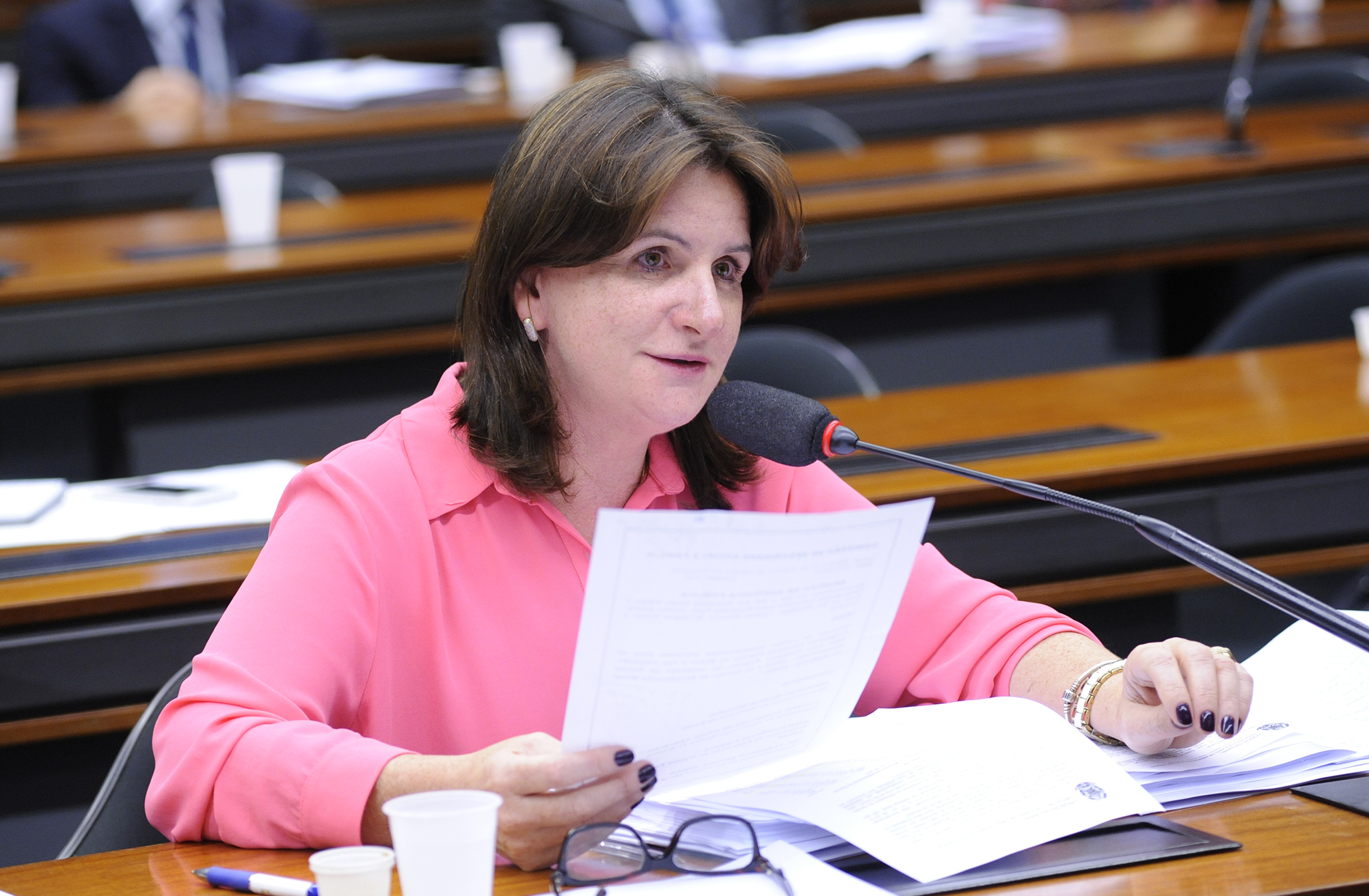 Deputados A - C - Carmem Zanotto