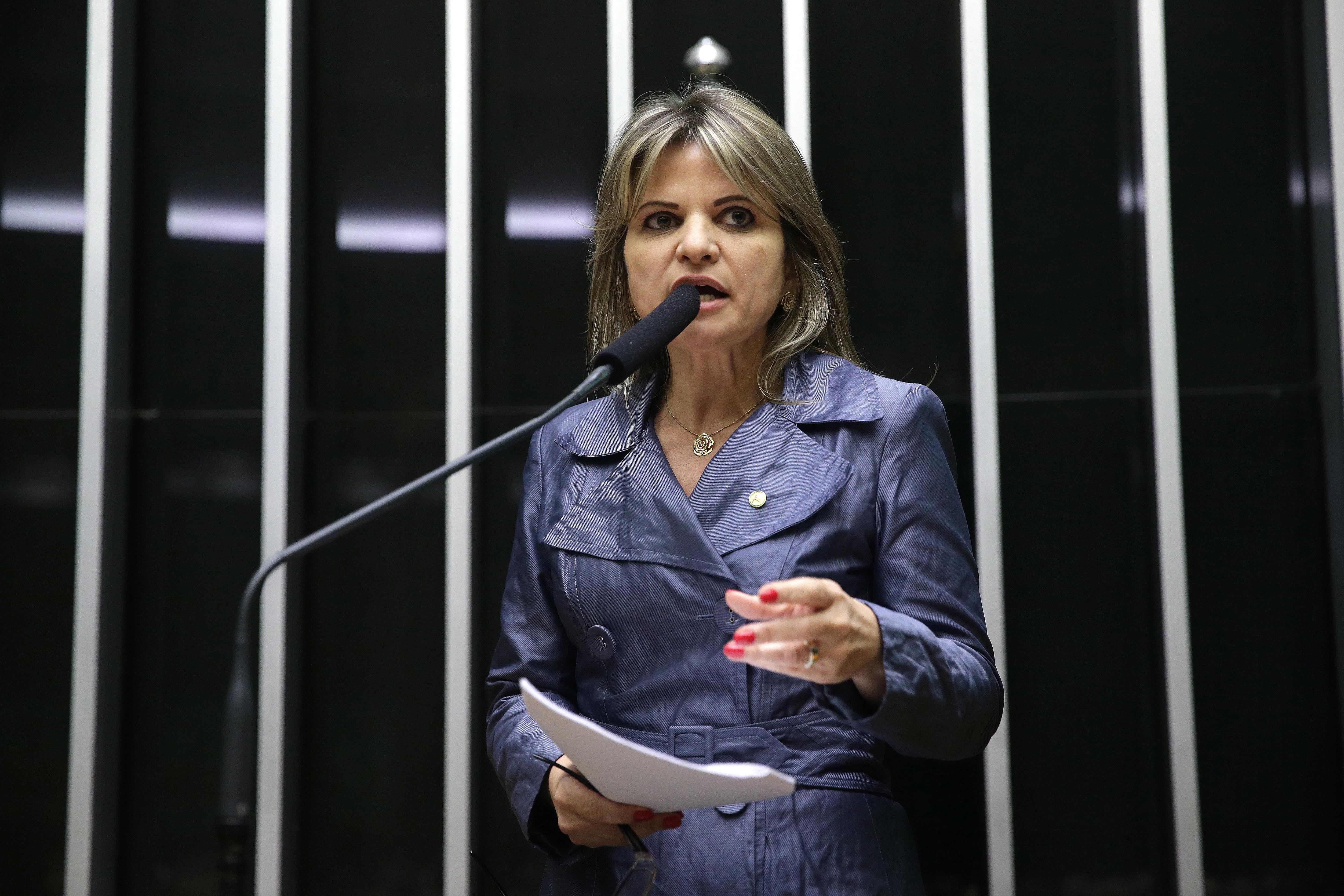Plenário aprova projeto sobre combate à violência contra mulheres -  deputada Flávia Morais (PDT-GO)