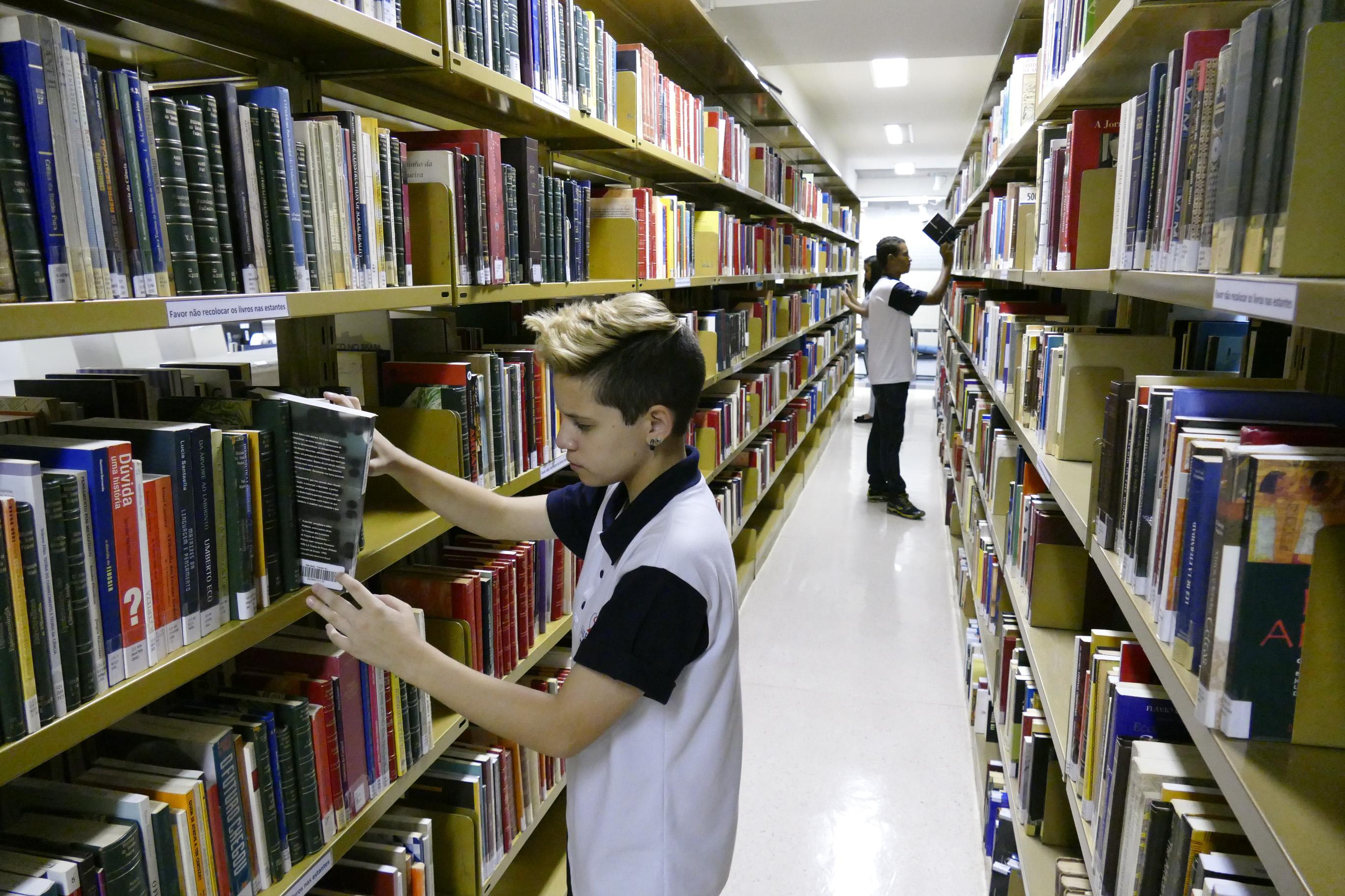 Educação - livros - biblioteca