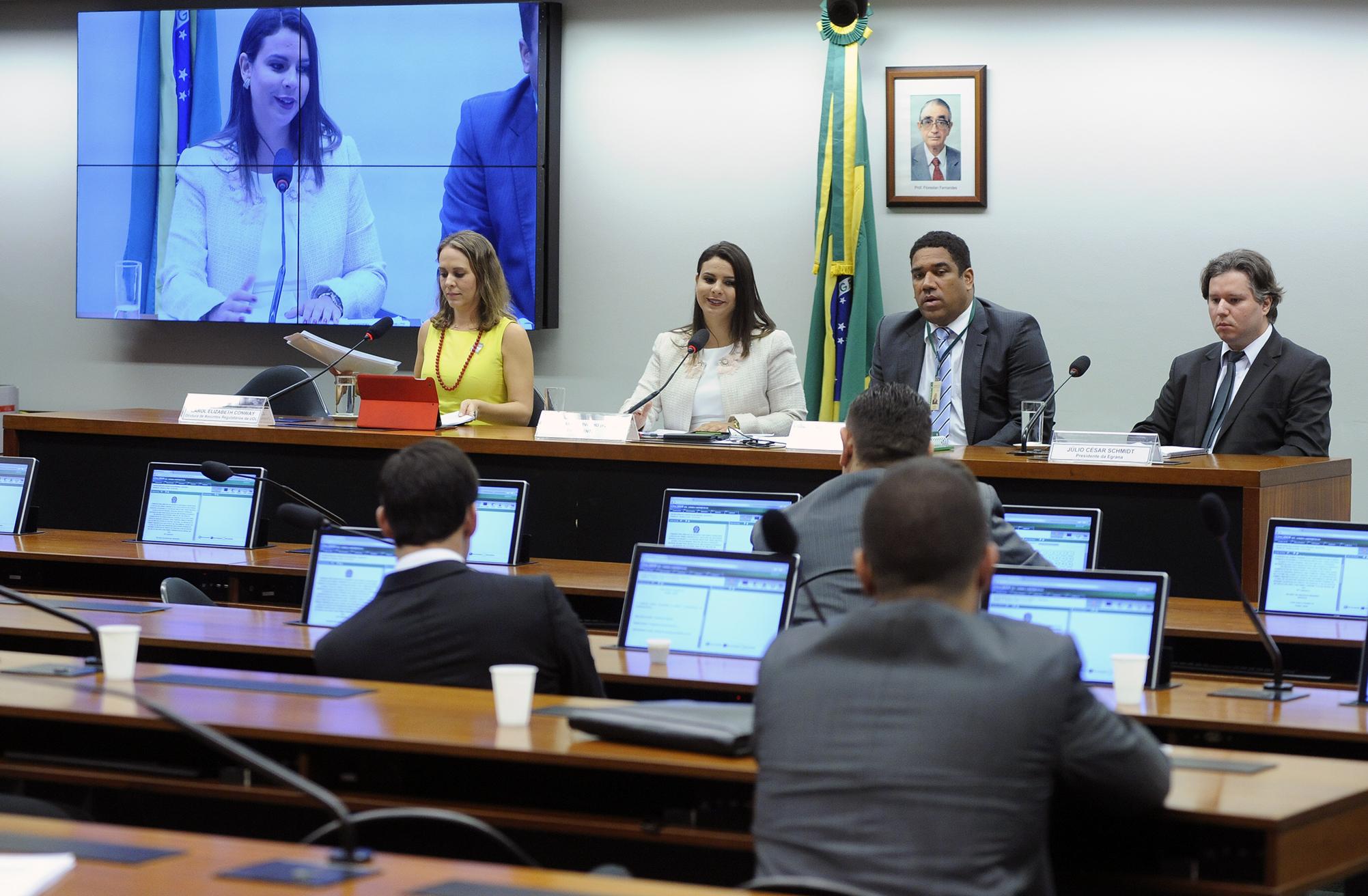 Audiência pública para discussão sobre a publicidade na internet e conteúdos ilícitos