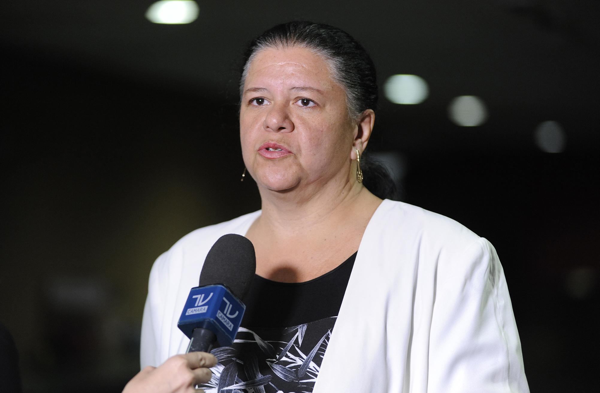 Dep. Laura Carneiro (PMDB-RJ) concede entrevista