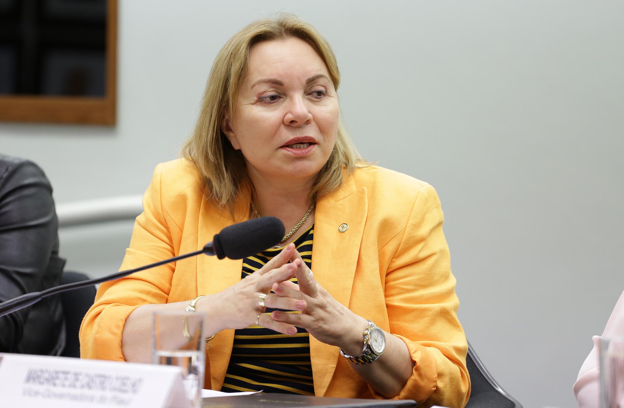 Reunião da Comissão Externa destinada a acompanhar a apuração e as ações vinculadas aos crimes de estupro em todo o território nacional. Dep. Gorete Pereira (PR-CE)