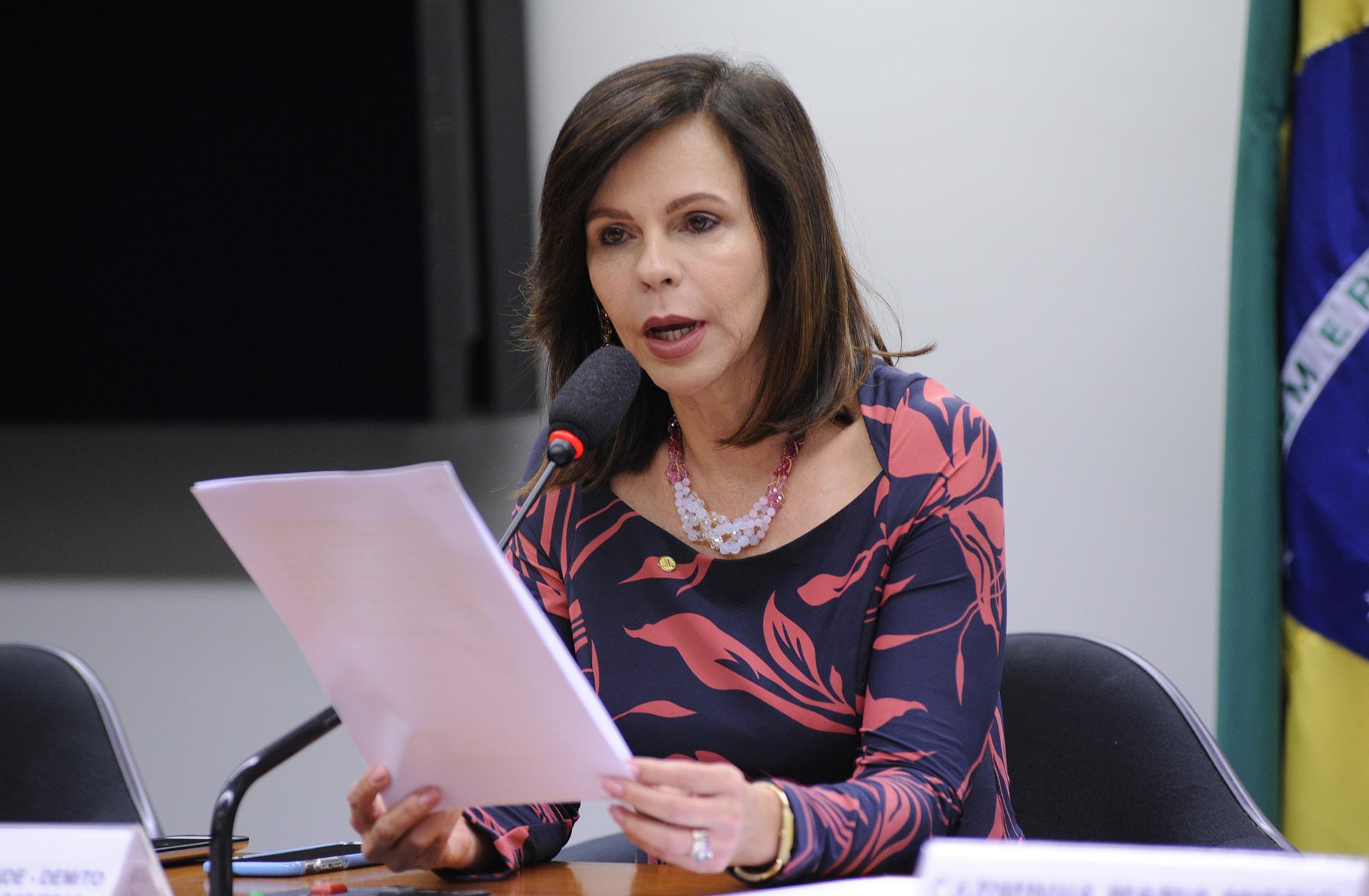 Audiência pública sobre os entraves na negociação de dívidas e o acesso ao crédito agrícola por parte dos produtores rurais.  Dep. Professora Dorinha Seabra Resende (DEM-TO)