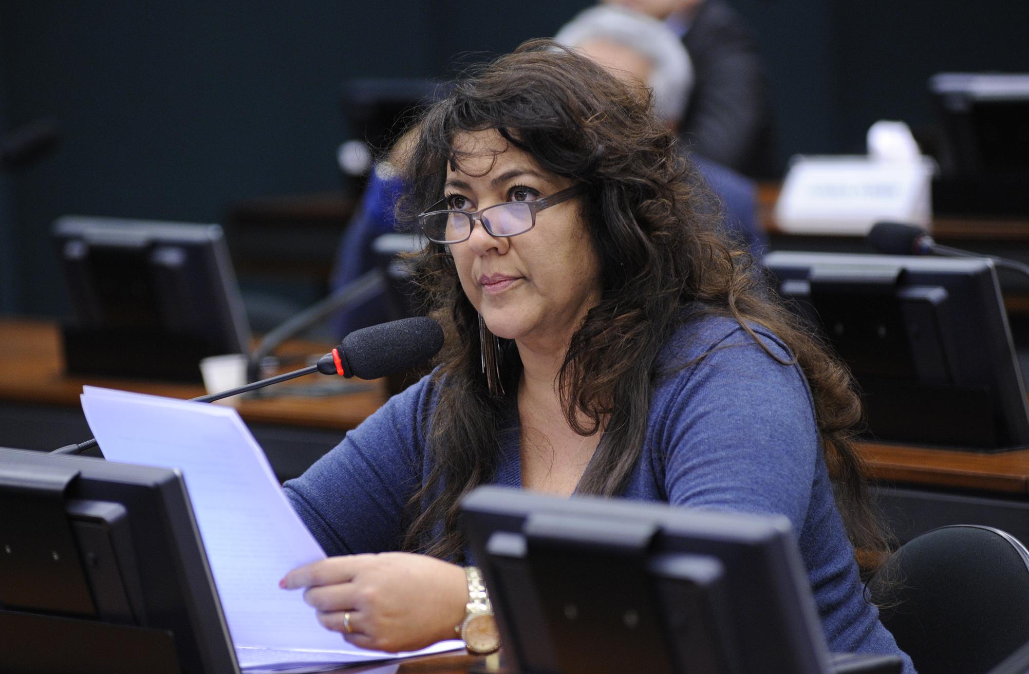 Audiência pública para tomada de depoimento do ex-interventor da Santa Casa de Misericórdia de Birigui/SP, Fábio Dutra Bertolin. Dep. Christiane de Souza Yared (PTN-PR)