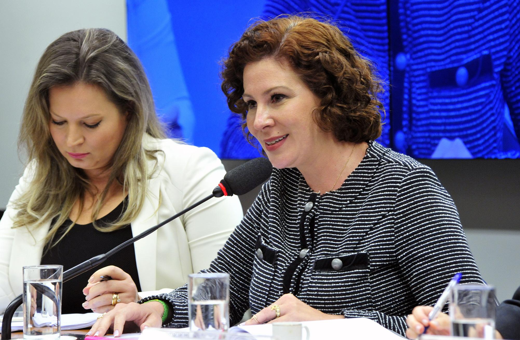 Audiência Pública e Reunião Ordinária. Representante do Movimento Nas Ruas, Carla Zambelli