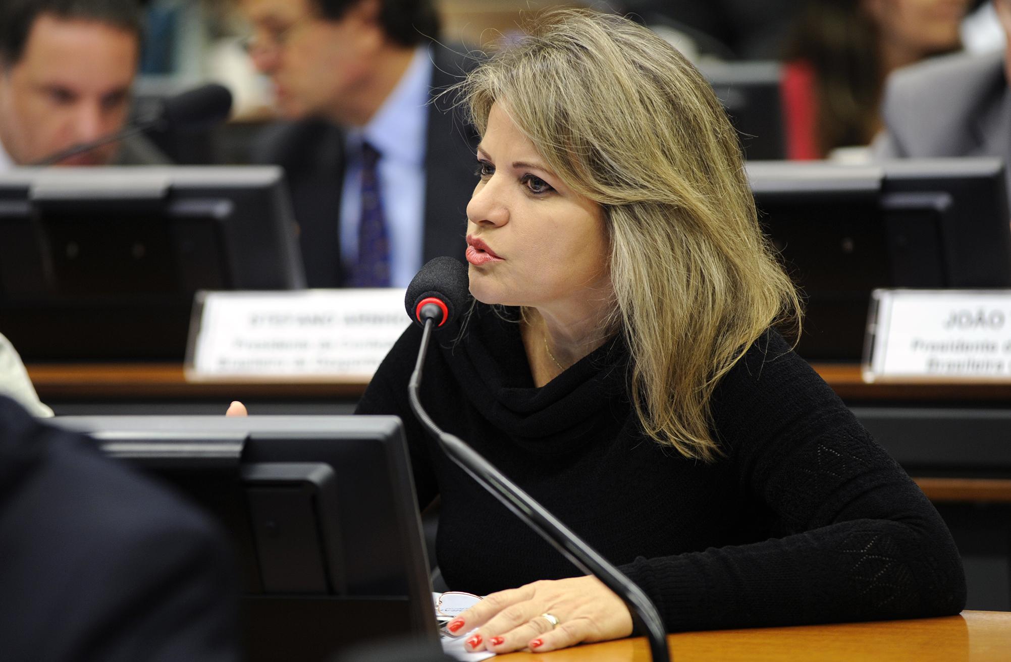 Subcomissão Especial do Plano Nacional do Desporto  Mesa Redonda: A terceira etapa da proposta do Plano Nacional do Desporto. Dep. Flávia Morais (PDT - GO)