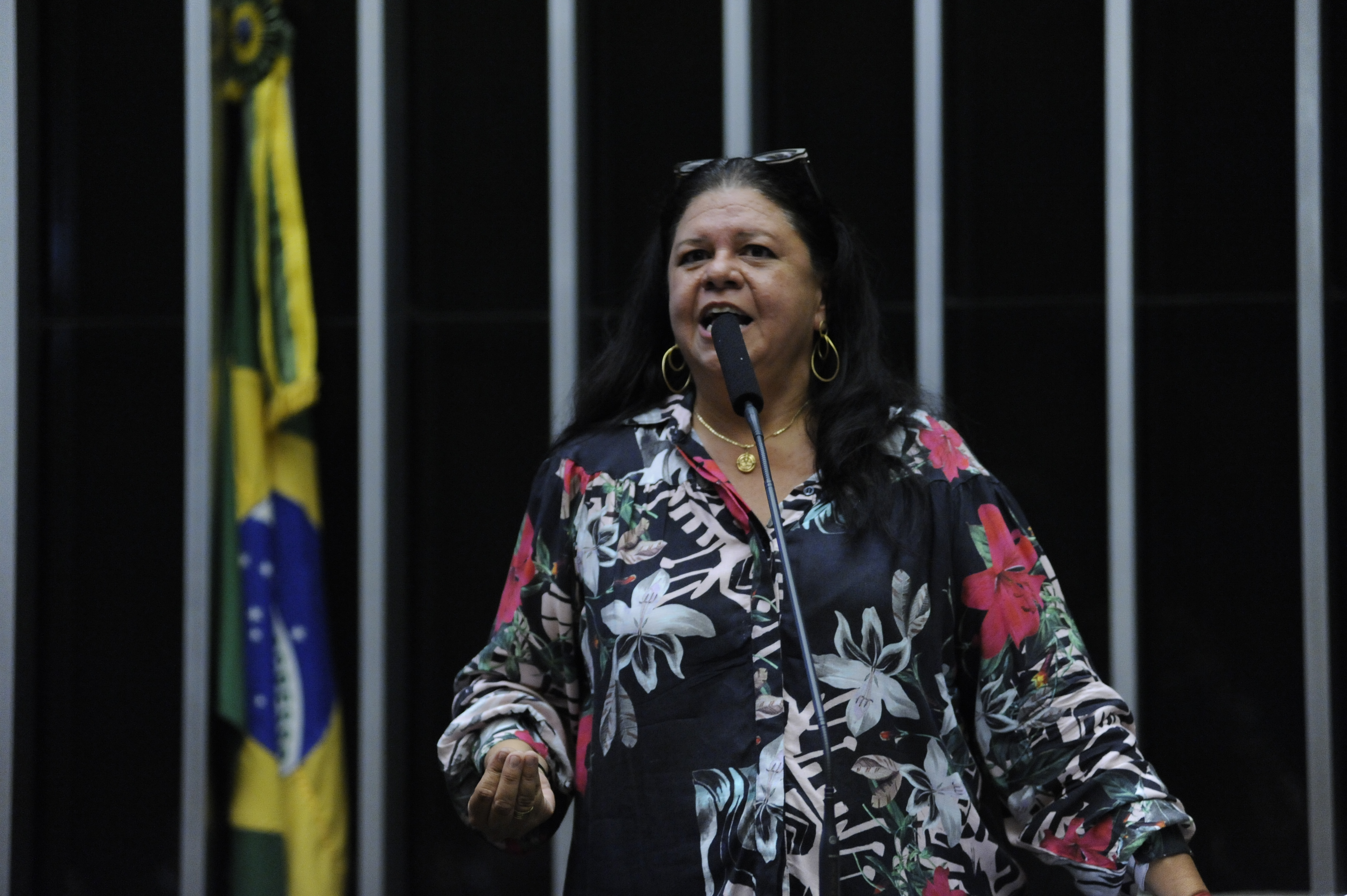 Sessão Extraordinária da Câmara dos Deputados - Deputada Laura Carneiro - PMDB-RJ