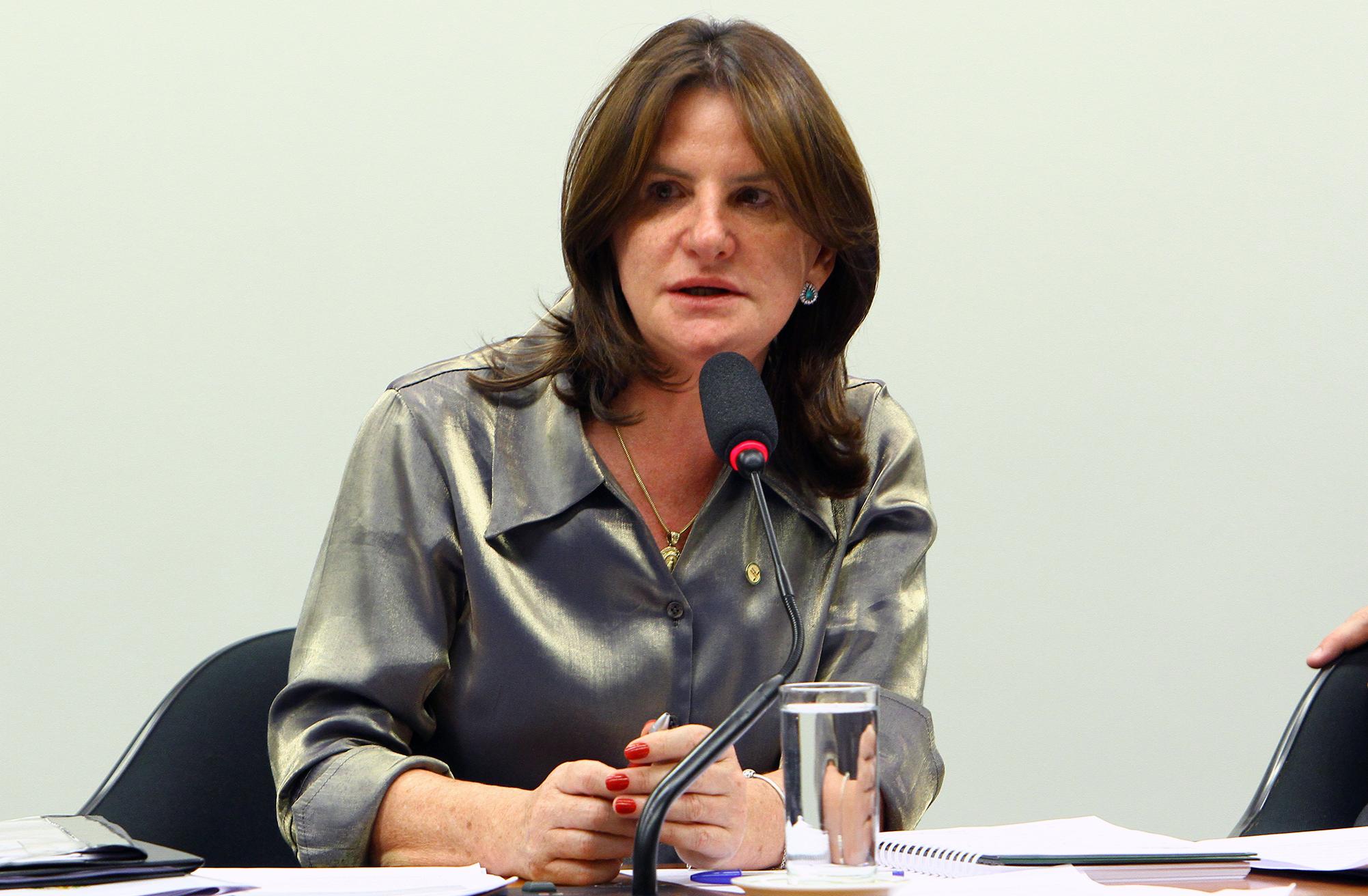 Reunião Ordinária. Dep. Carmen Zanotto (PPS - SC)