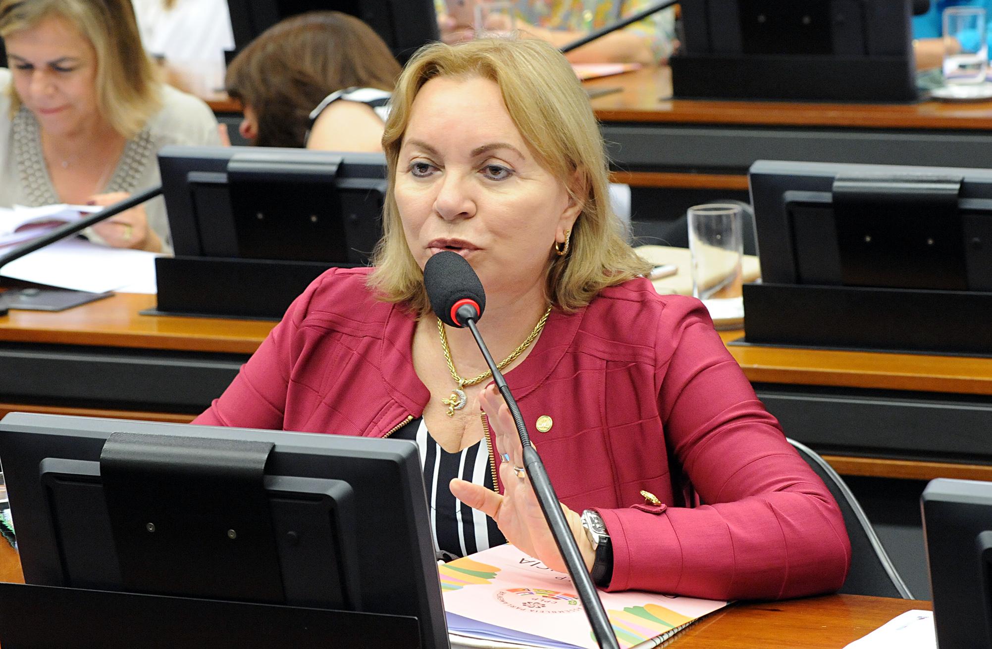 Reunião Extraordinária. Dep. Gorete Pereira (PR-CE)