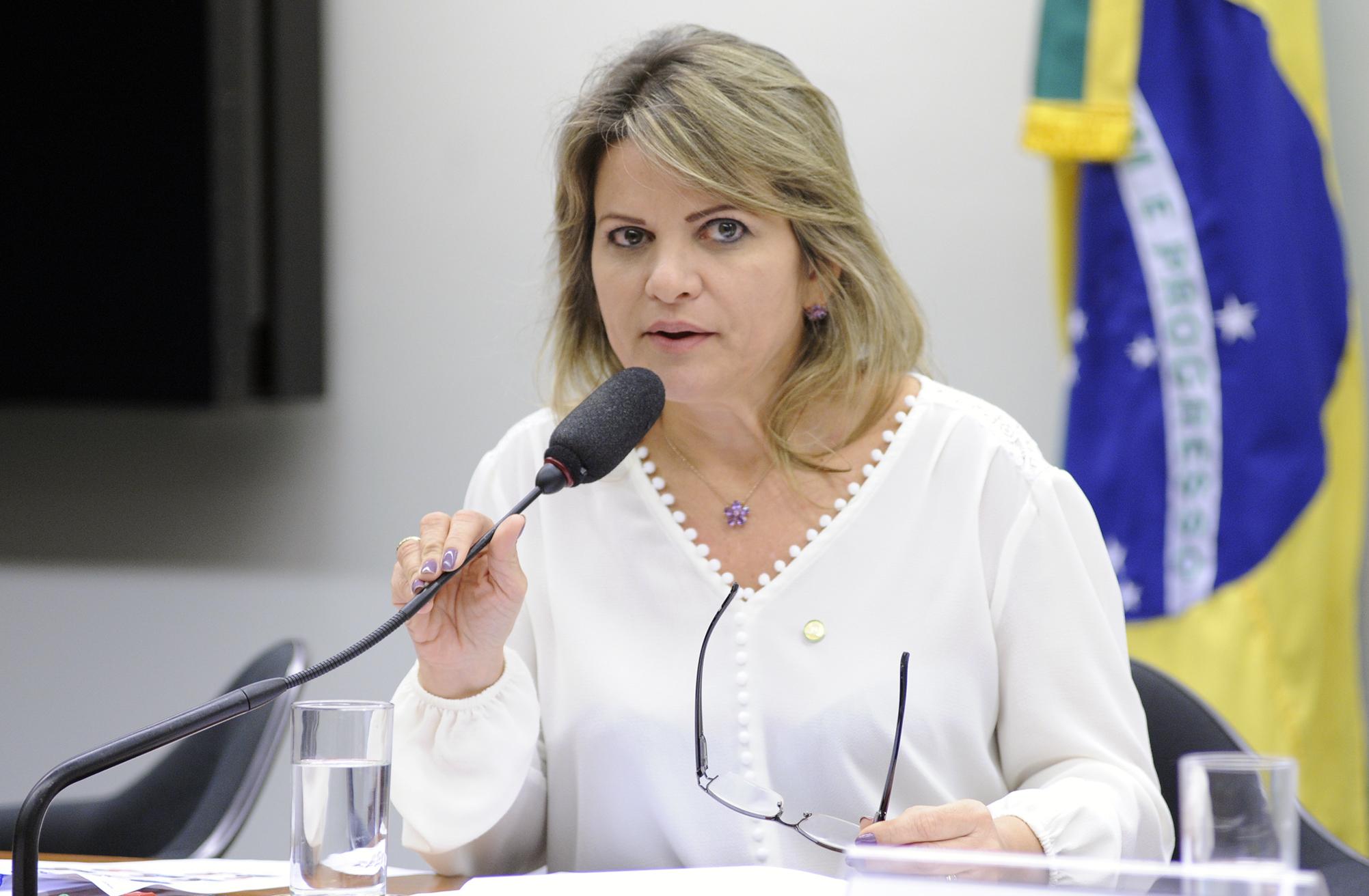 Reunião Ordinária. Dep. Flávia Morais (PDT - GO)
