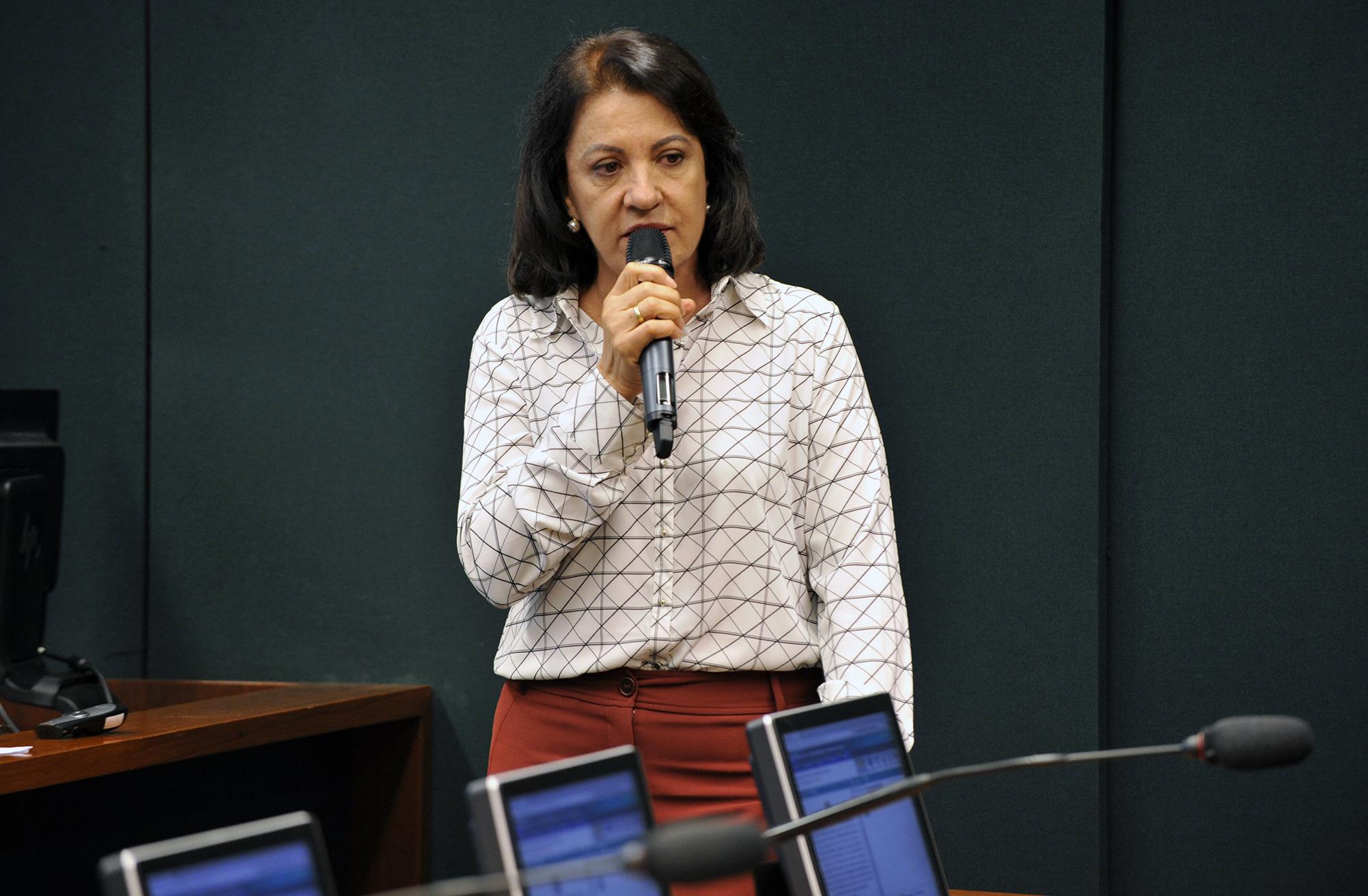 Audiência Pública e Reunião Ordinária. Ex-Secretária Municipal de Educação de Montes Claros - MG, Sueli Nobre
