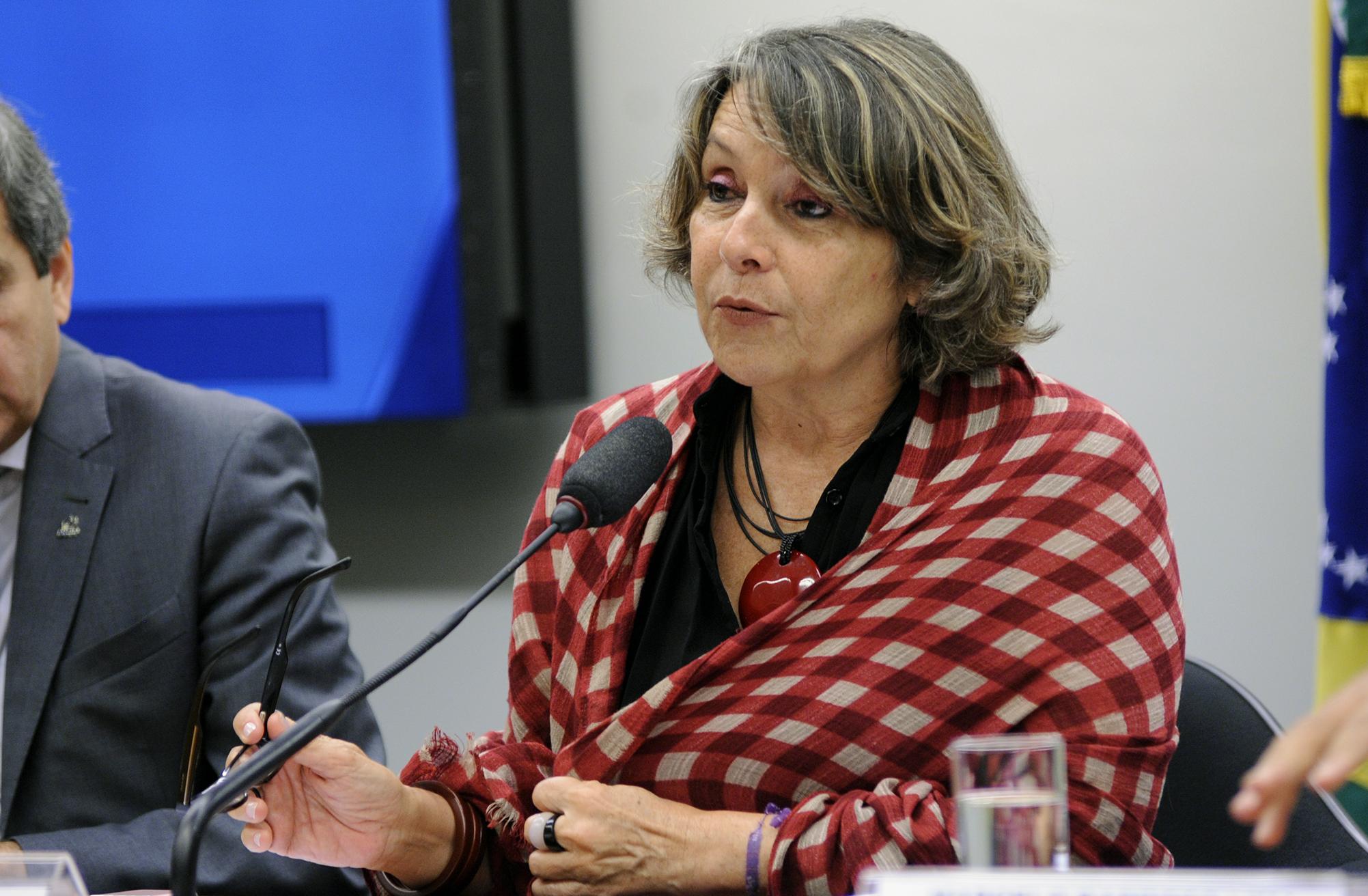 Audiência pública sobre a PEC 287/16, Reforma da Previdência (Regime Próprio dos Servidores Públicos). Dep. Érika Kokay