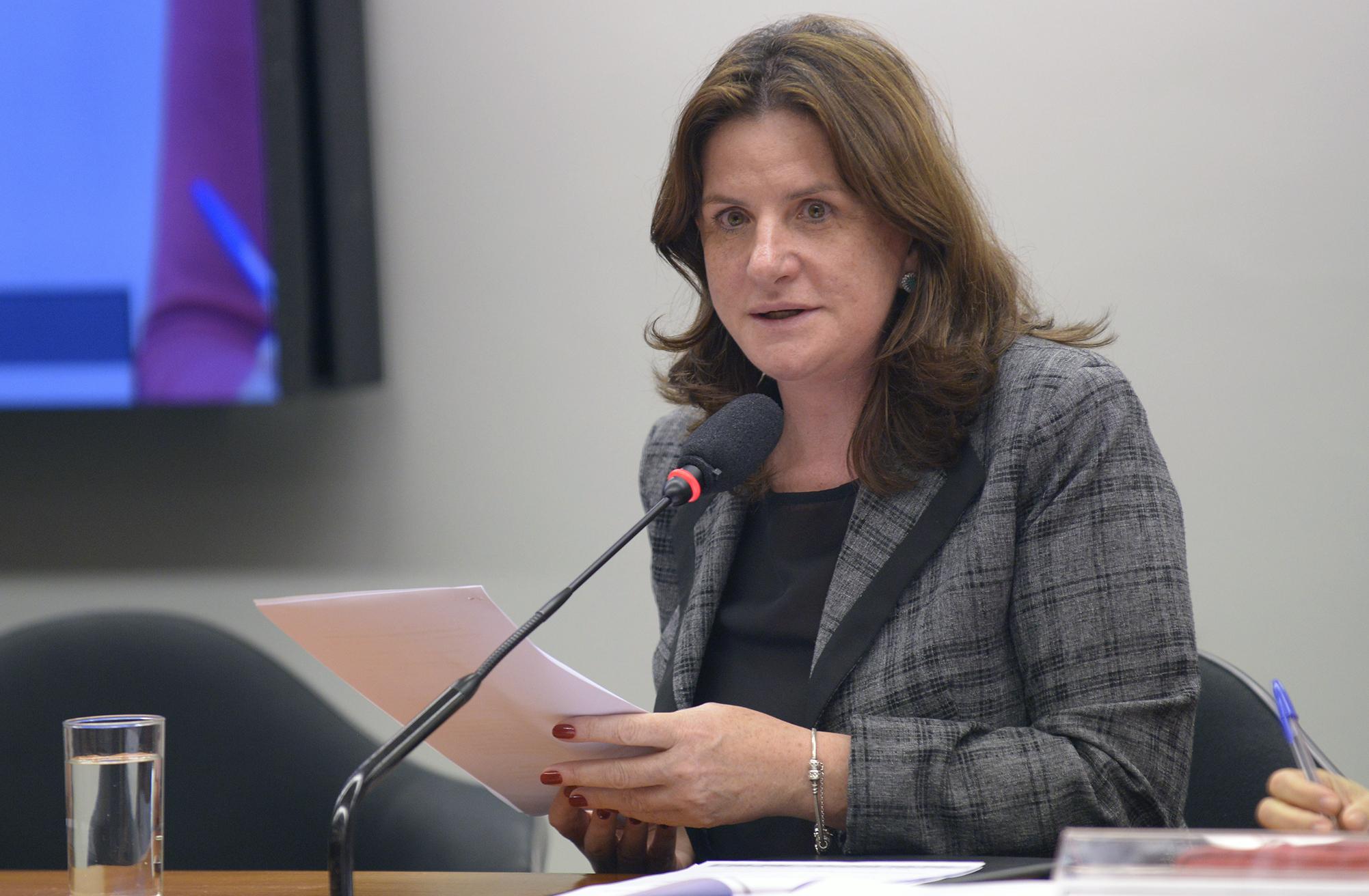 Audiência pública sobre o PL 6.662/2016, que dispõe sobre a Lei Orgânica da Segurança Pública. Dep. Carmen Zanotto (PPS - SC)