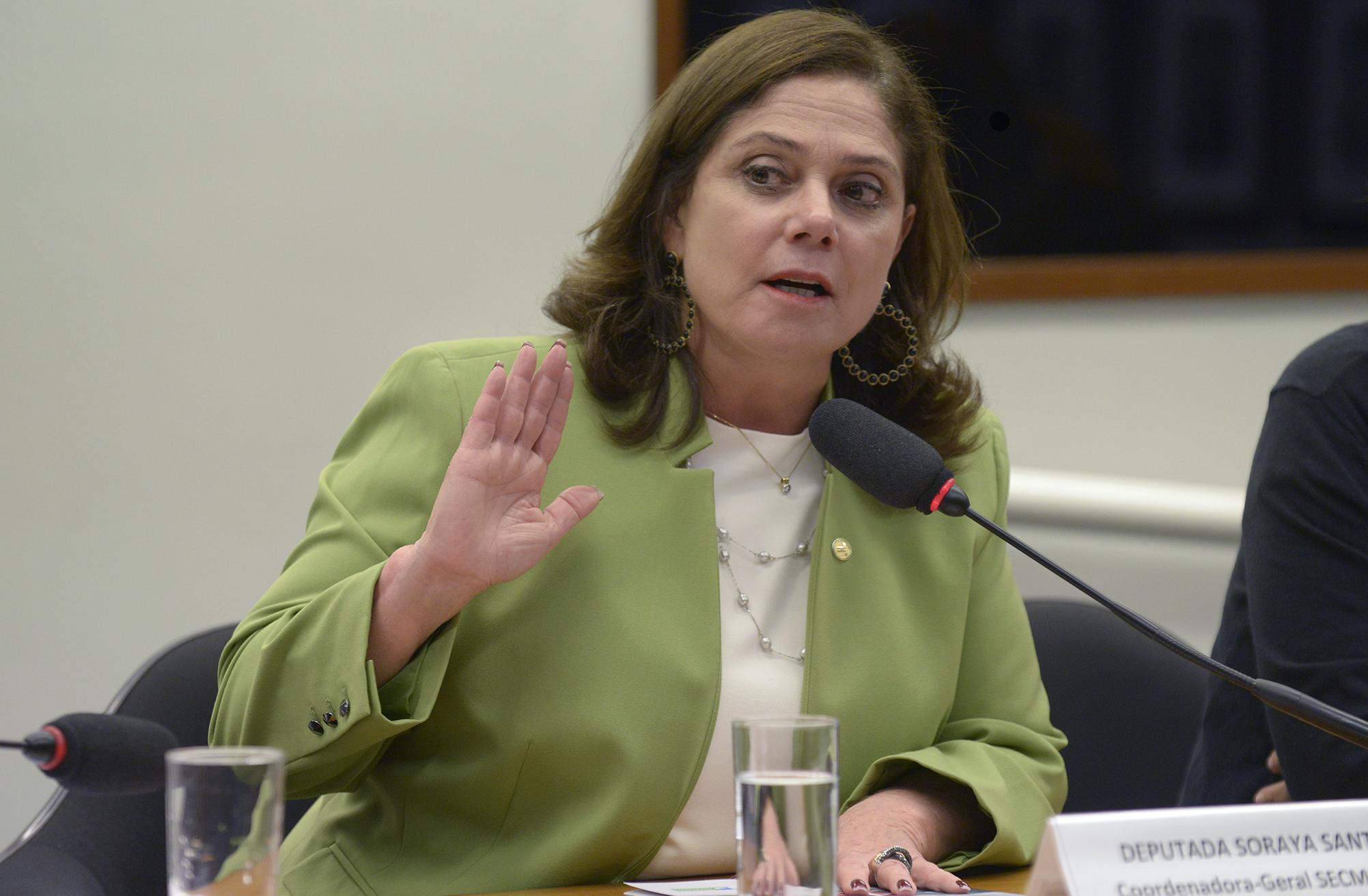 Seminário sobre a inclusão da economia do cuidado e o trabalho não remunerado realizado no interior dos domicílios, no Sistema de Contas Nacionais. Dep. Soraya Santos (PMDB - RJ)