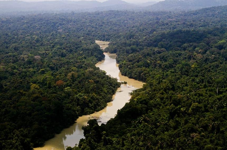 Meio Ambiente - Floresta - Amazônia - Vista aérea do Parque Nacional do Jamanxim, no Pará