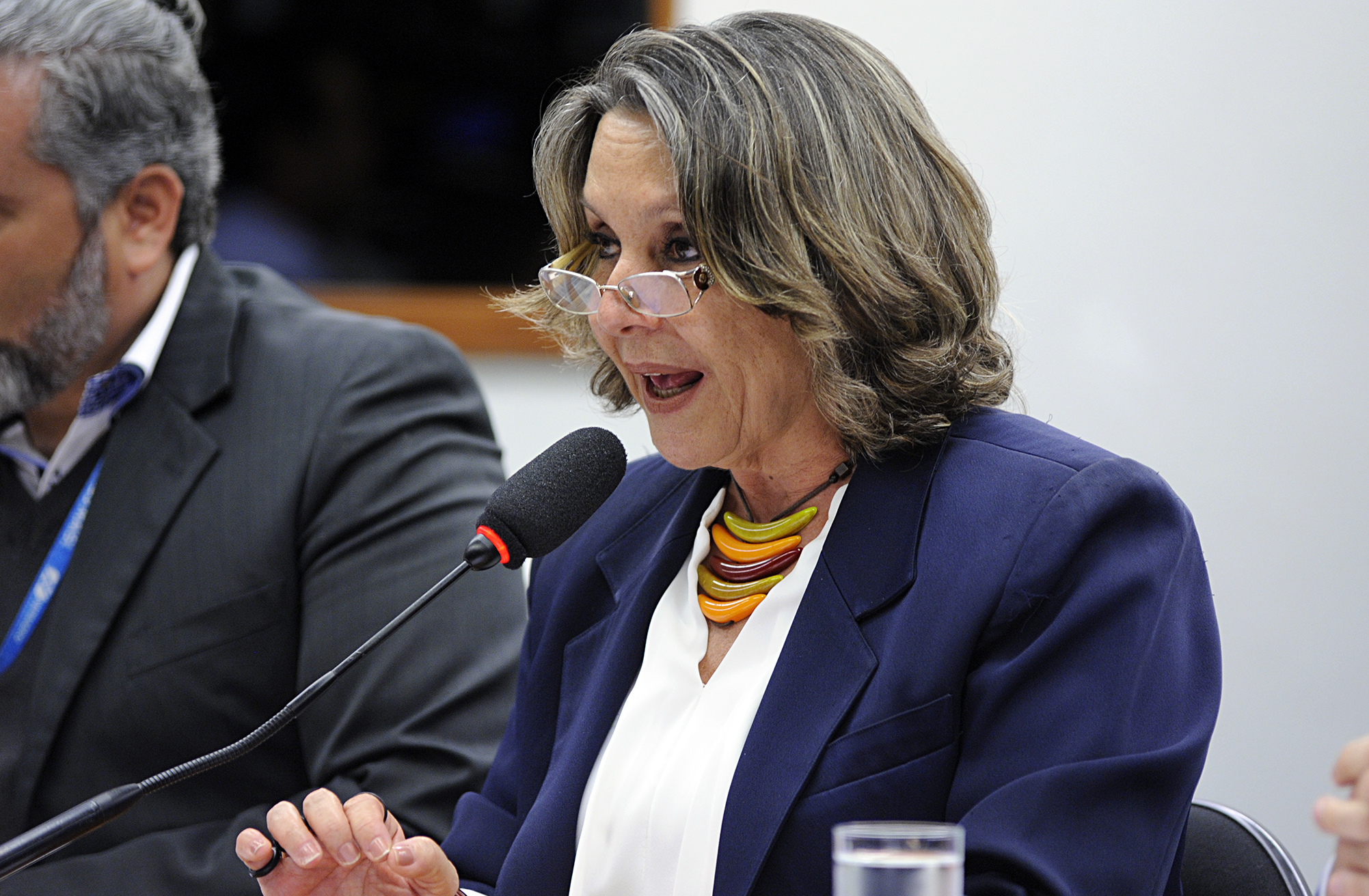 Audiência pública para discutir a ameaça da privatização da Empresa Brasileira de Infraestrutura Aeroportuária - INFRAERO. Dep. Erika Kokay (PT-DF)