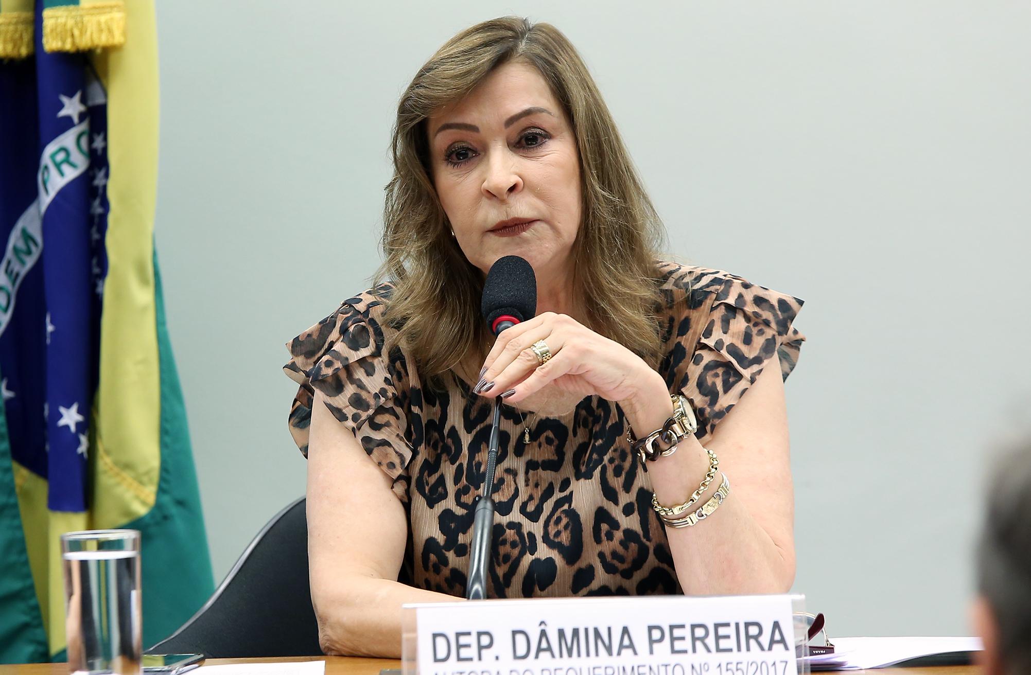 Audiência Pública e Reunião Ordinária. Dep. Dâmina Pereira (PSL - MG)