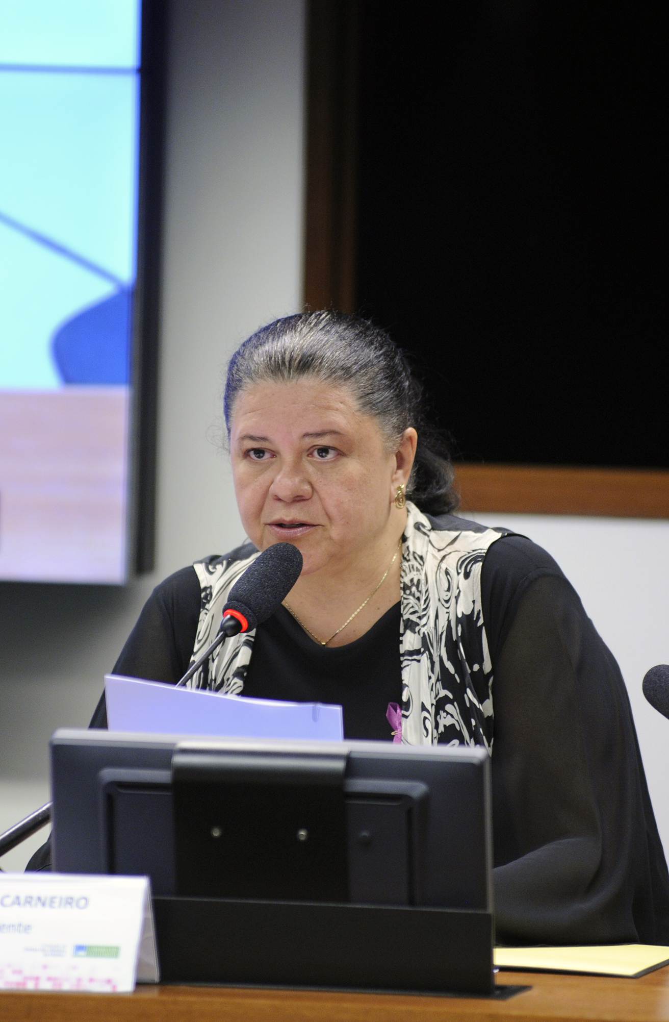 Reunião Deliberativa. Dep. Laura Carneiro (PMDB - RJ)