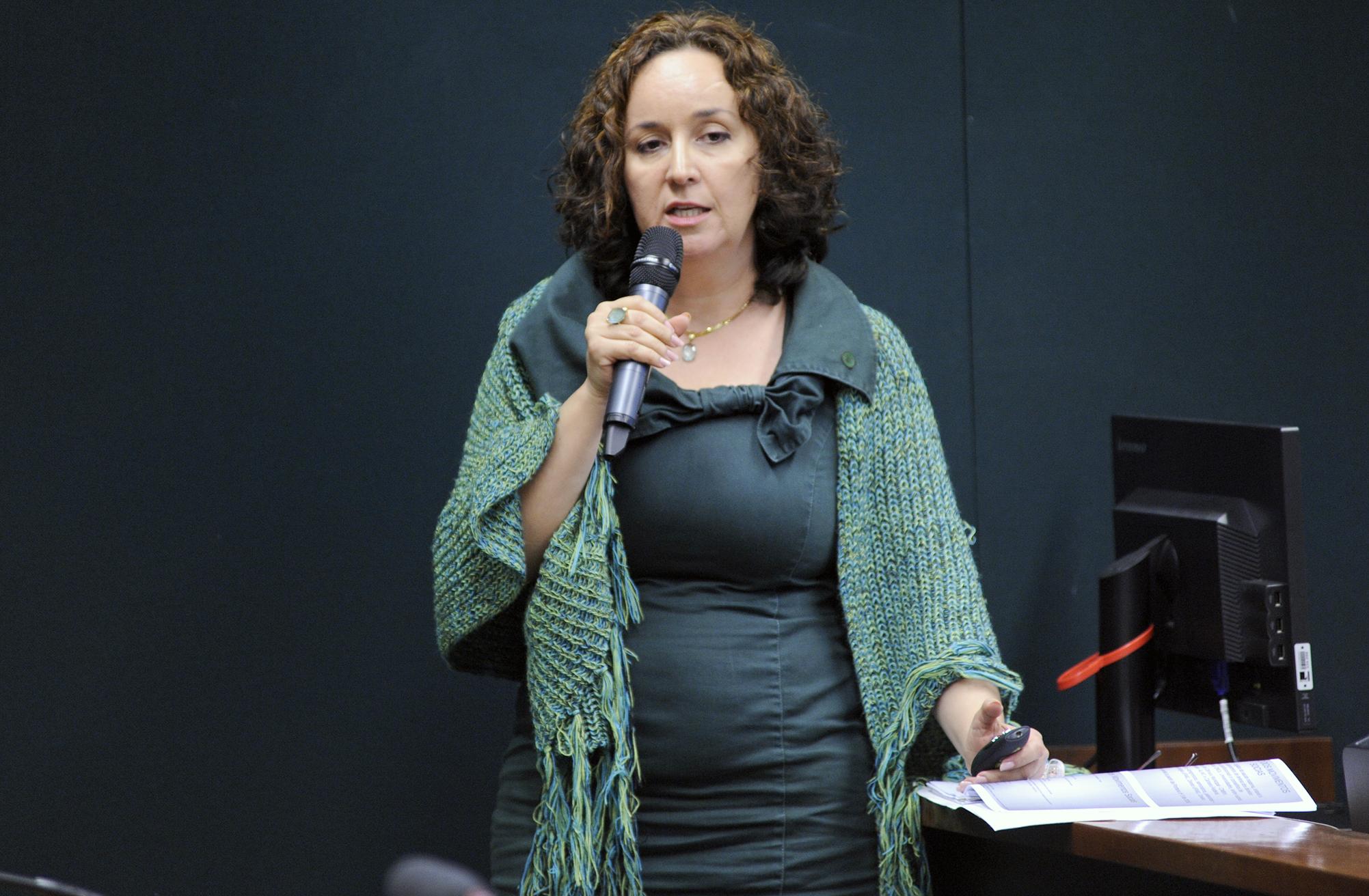 Audiência pública sobre a retirada compulsória de bebês de mães em situação de vulnerabilidade social em Belo Horizonte- MG. Defensora Pública da Defensoria Pública do Estado de Minas Gerais, Júnia Roman Carvalho