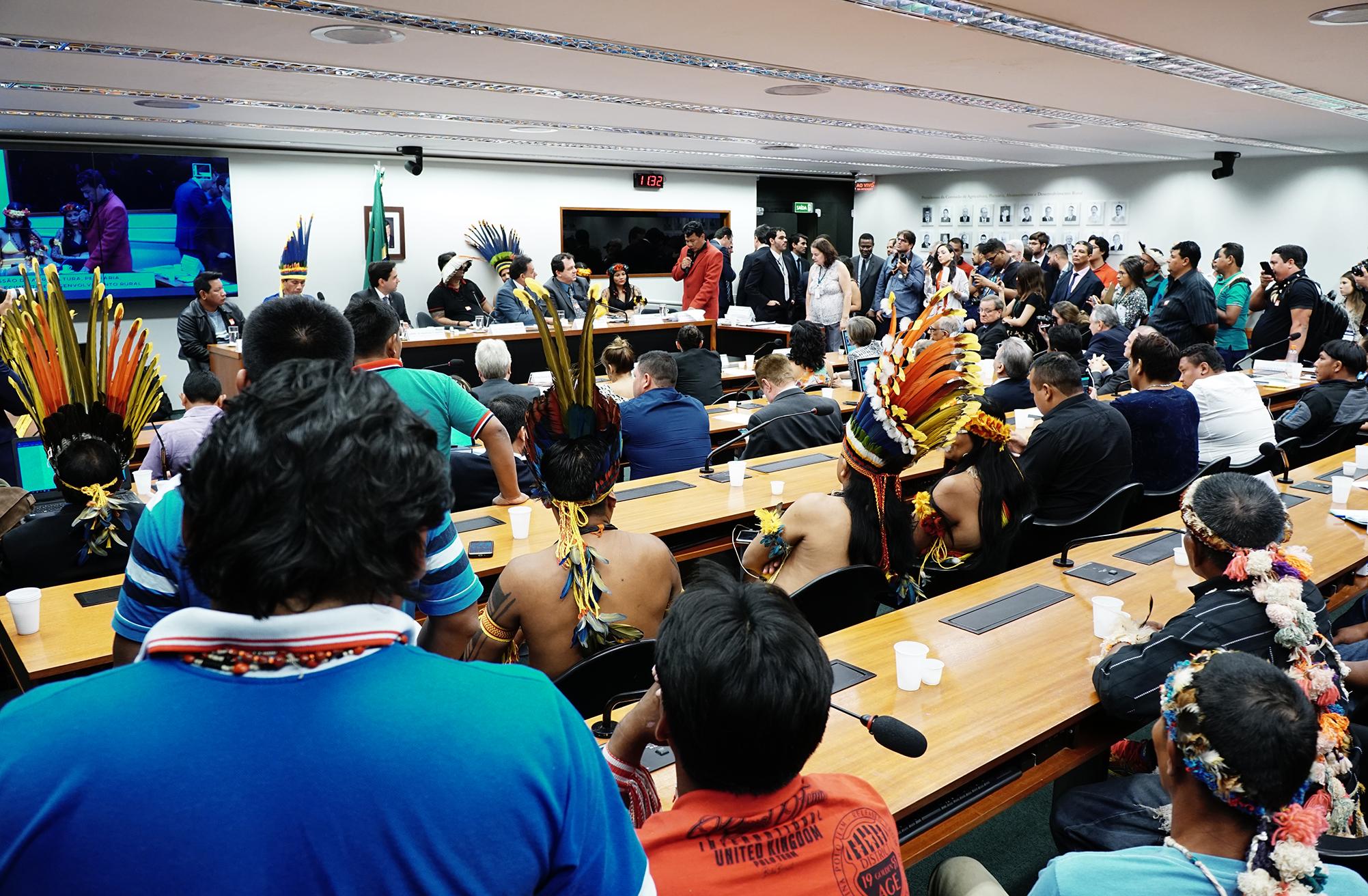 Audiência pública para debater a produção agrícola indígena