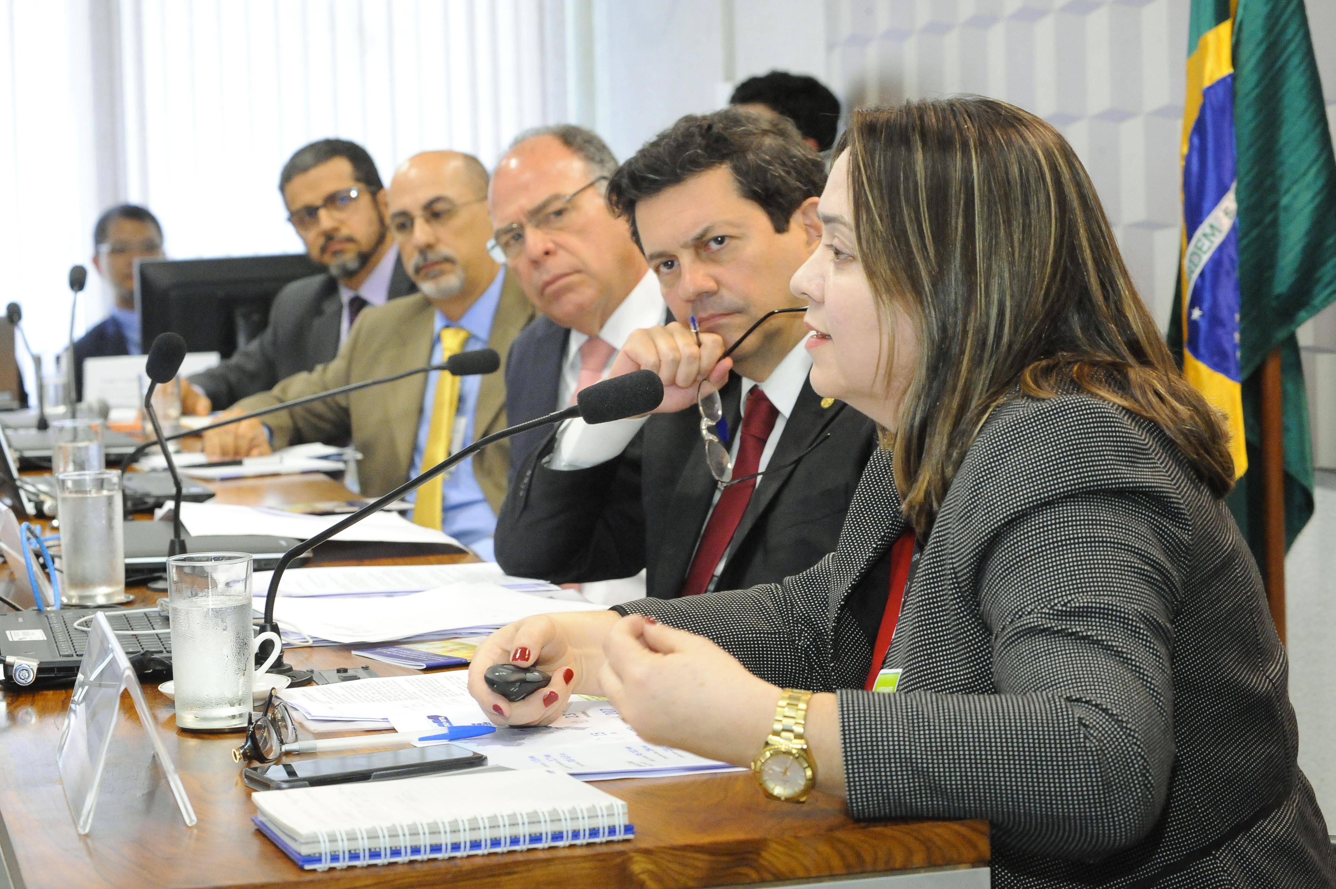Reunião da comissão mista MP 802-17