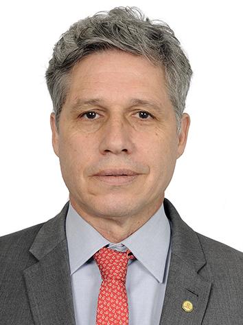 Foto do(a) deputado(a) Paulo Teixeira