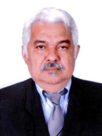 Foto do(a) deputado(a) PROFESSOR SETIMO