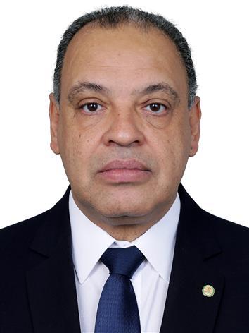 Foto do Deputado ROBERTO ALVES