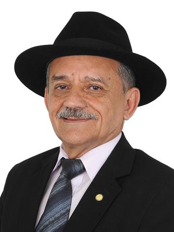 Foto do(a) deputado(a) LUIZ CARLOS RAMOS