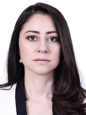 Foto de perfil do deputado Liziane Bayer